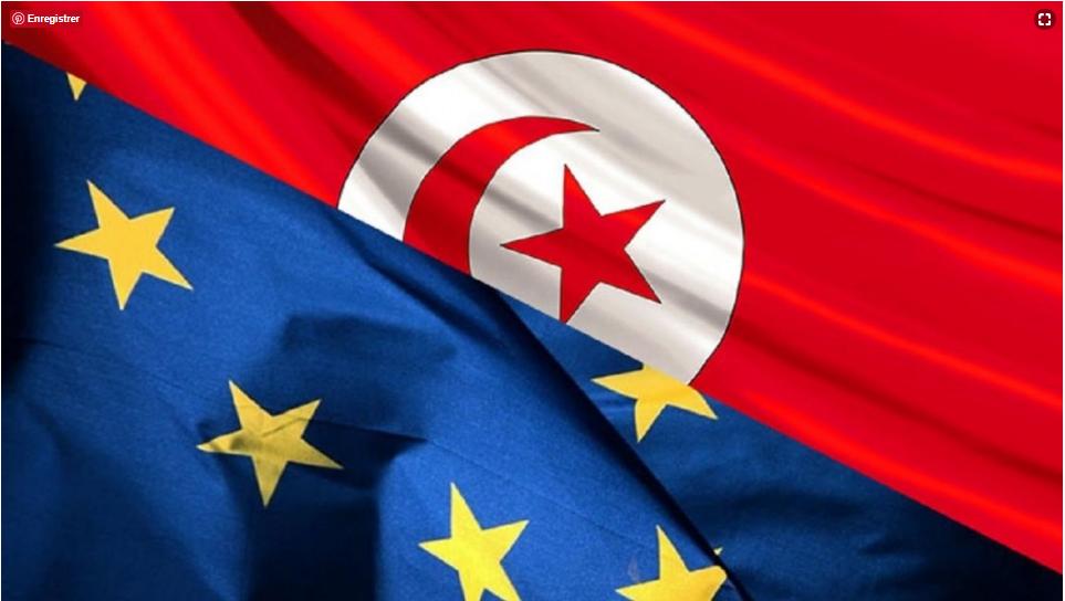 Evaluation de l'impact de la libéralisation des services dans le cadre de l'Accord de Libre Echange Complet et Approfondi (ALECA) entre la Tunisie et l'UE. Juillet 2016 (www.itceq.tn)